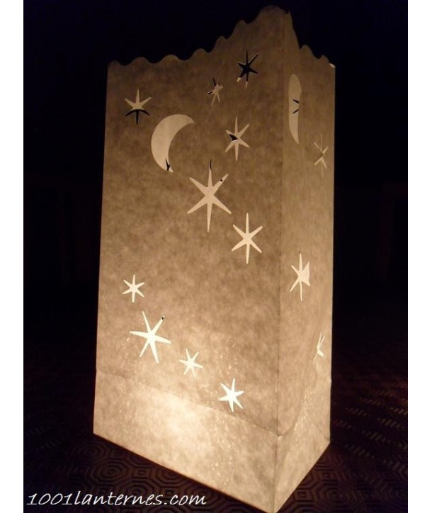 Pack de 10 lanternes de jardin modèle Nuitée